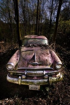 Abandoned classic car in the forest - Imgur