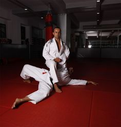 Several martial arts have been influenced by Ju-Jitsu such as : Aikido (Japan), Bartitsu (England), Hapkido (Korea), Judo (Japan),  Brazilian Jiu-Jitsu  (Brazil), Sambo (Russia), Systema (Russia), Kajukenbo (Hawaï), Krav Maga (Israeli), Kapap (Israeli), Pangamot (Philipino), Kenpo (China/Japan), Kempo (USA).