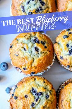 The Best Easy Jumbo Blueberry Muffins RecipeYou can find Muffins recipes and more on our website.The Best Easy Jumbo Blueberry Muffins Recipe Jumbo Blueberry Muffin Recipe, Homemade Blueberry Muffins, Jumbo Muffins, Simple Muffin Recipe, Vegan Blueberry Recipes, Blueberry Oatmeal Muffins, Easy Blueberry Desserts, Gluten Free Blueberry Muffins, Baby Muffins