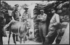 """Before 17 May 1915. Group with Simpson and his donkey """"Murphy"""", Gallipoli. From left: Lieutenant Colonel W B Lesslie, a Canadian officer attached to the Royal Enginers; Private John Simpson Kirkpatrick, 3rd Field Ambulance; Lieutenant-Colonel Edmund Bowler, Beach Commander Gallipoli; and Major C H Villiers-Stuart, Intelligence Officer. In front is Kirkpatrick's donkey """"Murphy"""". Queen Elizabeth II Army Memorial Museum: Photographs of NZ forces,  World War I. Ref: 1/2-168106-F. Alexander…"""