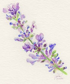 Idea for my lavender tattoo- love the detail
