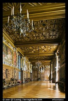 Picture/photo (Palace of Fontainebleau): Gallerie Francois Fontainebleau Palace. France Colors, Europe, Grand Homes, Royal Palace, Colorful Pictures, Versailles, Genealogy, Picture Photo, Mansions