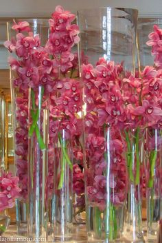 Orchids at the iconic @Beverly Wilshire (A Four Seasons Hotel) hotel at the end of Rodeo Drive.