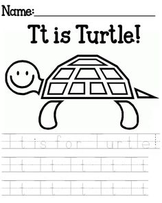 Sea Turtle and other aquatic animals coloring pages  Preschool