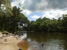 View of a little village along the Tapanahony river in the Surinam jungle