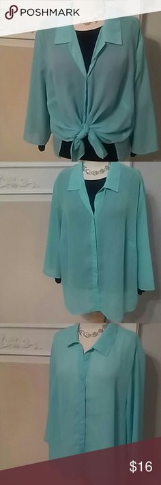 AQUA BLUE  PLUS SHEER LONG SLEEVE BLOUSE GORGEOUS AQUA BLUE SHEER LONG SLEEVE BLOUSE. SIZE 22-24W. GREAT FOR LAYERING. EASY CARE POLYESTER. WEAR LOTS OF DIFFERENT WAYS. REALLY PRETTY COLOR. Cato Tops Blouses