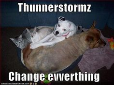 Thunnerstormz change evverthing... yes.... your idea about who is your friend completely changes.... LOL!