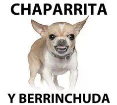 Chaparrita y Berrinchuda