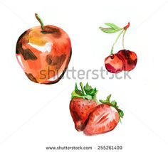 Set of watercolor paintings: apple, cherry, strawberry . Isolated on white