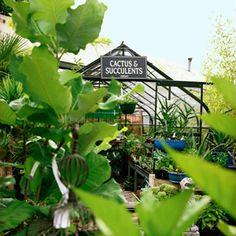 32 great spring trips   Garden: Nursery day trip to Portland's Sellwood neighborhood   Sunset.com