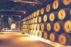 interior das caves de vinho do porto