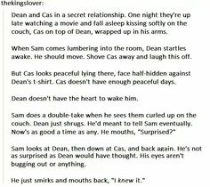 Awe, if Destiel were to become canon, this would be an amazingly adorable way for it to be introduced! ^-^
