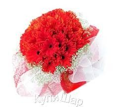 56f3ebef0b4e Send Flowers and Gifts to Philippines with www.regalomanila.com Buy Roses