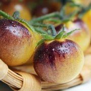 Tomate Antho weiß (Samen)