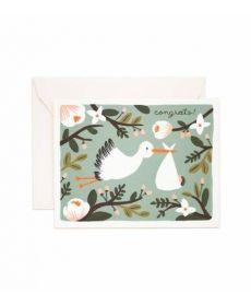 Little Stork Greeting Card
