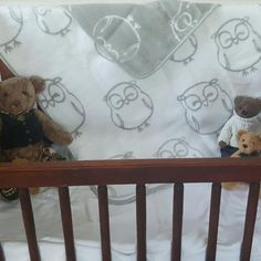 Baby Blanket Hoo Hoo Owl - Cute and Luxurious - Shop for it Online Now. Kids Blankets, Baby Shower Gifts, Owl, Delivery, Snoopy, Cute, Baby Shower Presents, Kinder Mat Covers, Shower Gifts