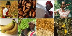 #FairTrade. More than just coffee and bananas! #imabzzagent