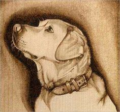 This pattern of a labrador will give you an opportunity to experiment with burning fur textures. Start by burning a rough outline around the dog's body and then Wood Burning Stencils, Wood Burning Crafts, Wood Burning Patterns, Wood Burning Art, Stencil Wood, Stenciling, Pyrography Patterns, Pixel Design, Dog Pattern