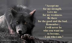 EVEN IF YOU DON'T ACCEPT ME I WILL BE WHO I AM....ALWAYS. So true, let the wolves run free! They are people too even if they don't show it on the outside. Animals have what we don't, intellegence, beauty, instincts to hunt and much more! <3 :)  Guys that is the original quote I kept it because my message it's getting spread  I'm so happy:)