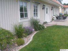 Lite vår bilder från vår trädgård..