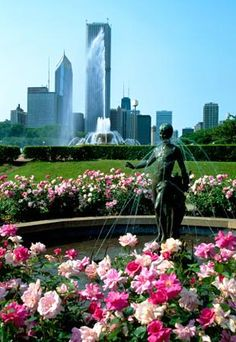 Potential wedding venue: north Rose Garden at Buckingham Fountain in Chicago.
