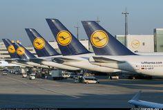 Lufthansa #Boeing 747-830 aircraft.