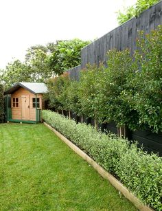 Potager Garden Helpful tips for keeping your garden and shed in order - Horticulturalist and director of Smart Garden Ryan McQuerry let's us in on his top tips for organising your garden and shed Backyard Garden Design, Small Garden Design, Small Garden With Shed, Desert Backyard, Backyard Plants, Small Backyard Gardens, Big Garden, Green Garden, Backyard Ideas