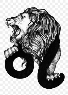Horoscope Signs, Astrology Signs, Astrological Symbols, Leo Zodiac, Free Illustrations, Free Image, Cool Designs, Graphics, Stickers