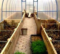 Красивые высокие грядки в теплице на даче своими руками Tunnel Greenhouse, Landscape Design, Garden Design, Rural House, Market Garden, Farm Gardens, Interior Exterior, Aquaponics, Raised Garden Beds