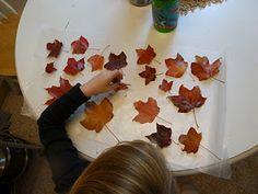 saving fall leaves from a day in life of my little brood