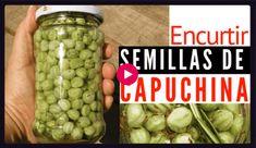 Deli, Pickles, Cucumber, Beans, Youtube, Vegetables, Solar, Home, Homemade Pickles