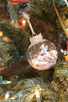 Seashell Christmas Ornament. One more thing to do with all those shells we collect.