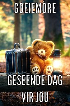 Good Morning Greetings, Good Morning Quotes, Goeie More, Afrikaans Quotes, Special Quotes, Mornings, Language, Teddy Bear, Night