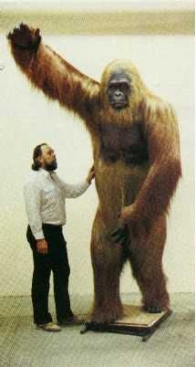 Possible Bigfoot?   Bill Munns next to Gigantopithecus