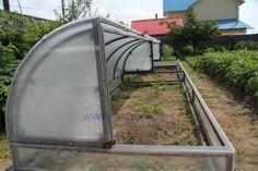 Mini Greenhouse, Greenhouse Plans, Garden Pool, Backyard Projects, Farm Gardens, Plantation, Raised Garden Beds, Permaculture, Hydroponics