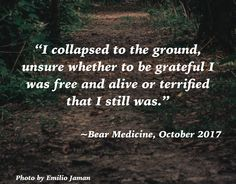 Cognitive dissonance! #BearMedicine