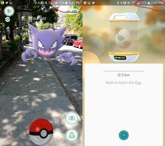 Pokémon Go has already taught me so much – TechCrunch Play Pokemon, New Pokemon, Libraries, Teaching, Education, Bookcases, Learning, Book Shelves, Educational Illustrations
