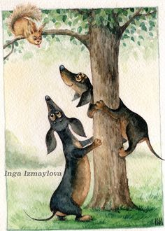 Doxies love squirrels, to chase that is!