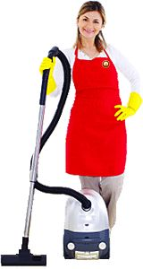 about cleaning services chicago on pinterest professional cleaning