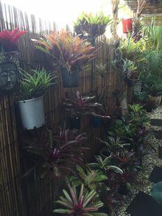 Filled up my side garden