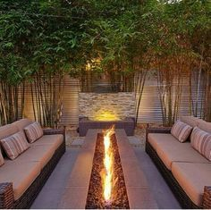 Gorgeous outdoor firepit, furniture and water feature, offered lots of privacy by a living wall of bamboo!Gorgeous outdoor firepit, furniture and water feature, offered lots of privacy by a living wall of bamboo! Fire Pit Seating, Backyard Seating, Fire Pit Backyard, Backyard Patio, Backyard Landscaping, Seating Areas, Landscaping Ideas, Outdoor Seating, Outdoor Privacy