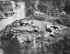 Discovery and excavations of the victims of the eruption of Vesuvius in Pompeii, c. Ancient Pompeii, Pompeii Ruins, Pompeii Italy, Pompeii And Herculaneum, Ancient Ruins, Ancient Artifacts, Pompeii History, Ancient History, Ancient Egypt