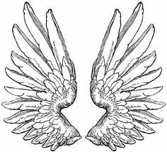 Hipsters, Mandala Floral, Tribal Wings, Diy Angel Wings, Tattoos Mandala, Wolf, Wing Tattoo Designs, Tattoo Flash Art, Wings Design