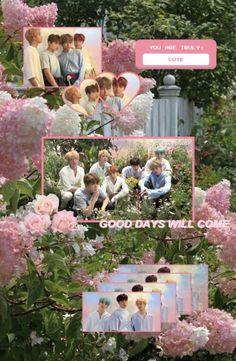 Bts Jungkook, Namjoon, Seokjin, Taehyung, Cute Panda Wallpaper, Bts Wallpaper, Bts Bg, Bts Name, Panda Wallpapers