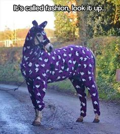 Um, it's a horse in purple sheep pajamas.