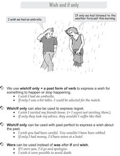 Grade 9 Grammar Lesson 31 Wish and if only