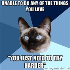 """Chronic Illness Cat - unable to do any of the things you love """"you just need to try harder"""""""