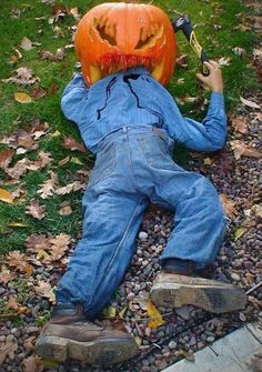 halloween decoration pumpkin dead