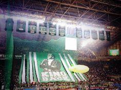 Los pelos de punta: el OAKA se cae para recibir a Zeljko Obradovic con un tifo gigante (Vídeo) #basketbol #basquetbol #kiaenzona #equipo #deportes #pasion #competitividad #recuperacion #lucha #esfuerzo #sacrificio #honor #amigos #sentimiento #amor #pelota #cancha #publico #aficion #pasion #vida #estadisticas #basketfem