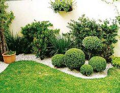 Plantas decorativas para jardines peque�os